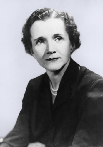 30 April (1963): Rachel Carson to Dorothy Freeman