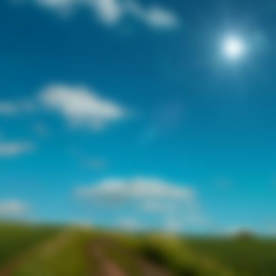 grass-path_sun
